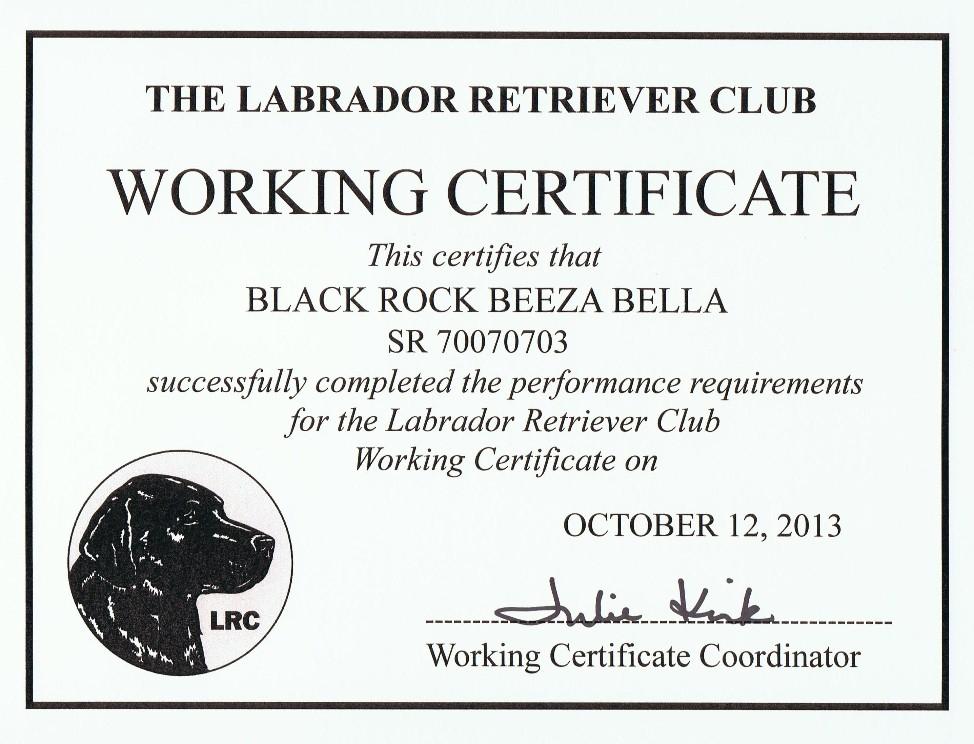 Black Rock Brutus WC – Working Certificate Format